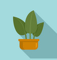 tropical leaf houseplant icon flat style vector image vector image