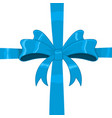 blue ribbon bow wrapped over giftbox vector image