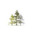 cedar tree logo design template vector image