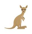 cute kangaroon icon image vector image vector image