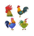set with cute roosters happy animals zoo vector image