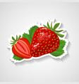 Strawberry sticker cartoon