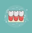 teeth dental care vector image