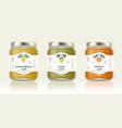 three packaging carambola kiwi peach jam vector image