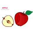 apple fruit vector image vector image