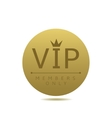 Golden Vip card vector image