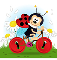 ladybug on bike vector image vector image