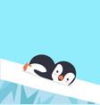 penguin slide on ice vector image vector image
