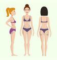 plastic surgery body parts woman correction vector image vector image