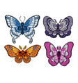 stylized colorful butterflies isolated on white vector image