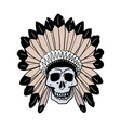 vintage with indian skull and feather vector image