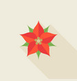 christmas flower or poinsettia vector image