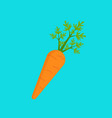 carrot icon flat style vector image