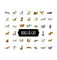 cute dogs collection for your design vector image