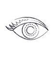 eye with eyelashes in monochrome blurred vector image