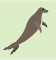 hawaiian monk seal swimming animal hawaii mammal vector image
