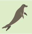 hawaiian monk seal swimming animal hawaii mammal vector image vector image