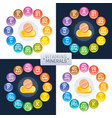 mineral vitamin supplement icons a b c d e vector image
