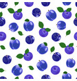 plum fruits seamless pattern with on white vector image