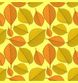 seamless pattern with elm and beech autumn leaves vector image vector image