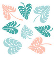set monstera tropical jungle plant green blue vector image
