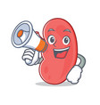with megaphone kidney character cartoon style vector image vector image