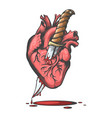 heart pierced by knife vector image vector image