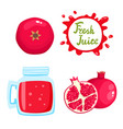 set of pomegranate juice and fruits vector image