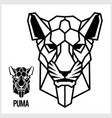 abstract linear polygonal head a puma vector image vector image