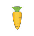 carrot flat vector image
