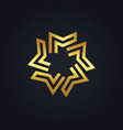 gold geometry star logo vector image vector image