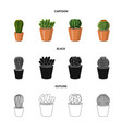 isolated object of cactus and pot logo collection vector image vector image