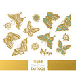 metallic temporary tattoos gold silver vector image