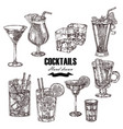 set alcoholic cocktails hand drawn drinks in vector image