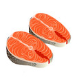steak of salmon vector image