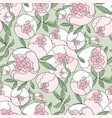 tender line peony flower seamless pattern vector image vector image