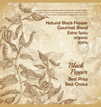 vintage banner with black pepper plant vector image vector image