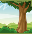 beautiful forest cartoon vector image vector image