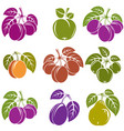 collection of simple fruits icons with green vector image vector image