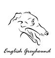 English Greyhound vector image