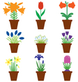 flower pot color vector image vector image