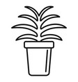 flower succulent pot icon outline style vector image vector image