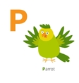 letter p parrot zoo alphabet english abc vector image vector image