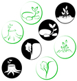 Logo trees and plants vector image vector image