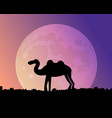night camel in the desert vector image