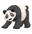 Panda with happy face vector image vector image