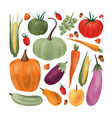 collection of ripe fresh harvested vegetables vector image