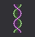 dna strand symbol isolated on black background vector image