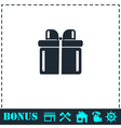 Gift icon flat vector image