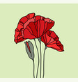hand drawn poppies stained glass style vector image